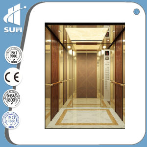 Best Selling in USA! Etching Mirror stainless Steel Cabin Residential Elevator pictures & photos