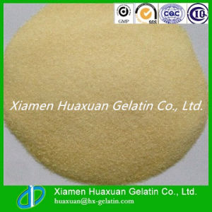2016 Hot Sale Food Grade Gelatin for Yoghurt pictures & photos