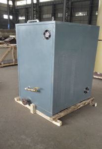 Electric Steam Boiler Size of Ldr0.2-0.4 pictures & photos