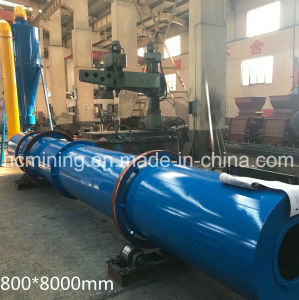 Factory Direct Supply Wood Chip Vacuum Dryer pictures & photos