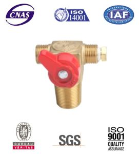 CNG Cylinder Valve - CNG Valve - Cylinder Valves for Vehicle (CTF-1A) pictures & photos
