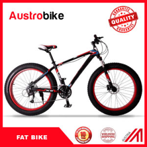 Complete Fat Bike Fatbike 26er Carbon Fat Bike with Hydrulic or Mechanical Disc Groupset pictures & photos