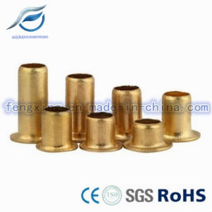 Customized Copper Hollow Tubular Rivet pictures & photos
