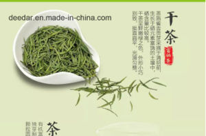 High Quality Green Tea pictures & photos