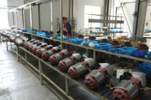 10t Electric Chain Hoist Fixed Type Certified Single Speed pictures & photos