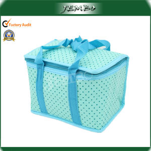 Durable Insulated Non Woven Cooler Bags pictures & photos