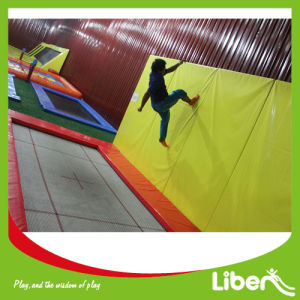 Wholesale Best Choice Children Play Center Rectangle Trampoline with Safety Certificate pictures & photos