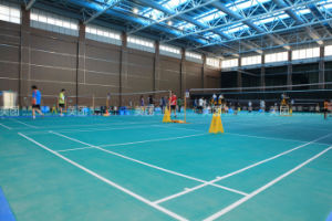 Prefab Steel Structure Badminton Hall with Low Cost pictures & photos