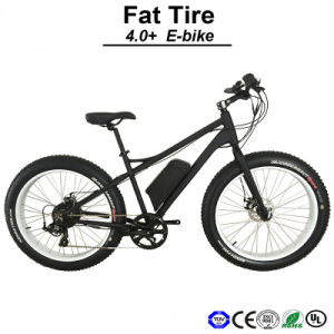 500W Big Tire Fat Tire Electric Bike Bicycle E-Bicycle E-Bike (TDE12Z) pictures & photos