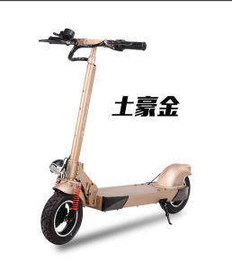 600W Kick Scooter with F/R Shocks, 48V/20ah Lithium pictures & photos