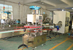 Automatic Acid Liquid Filling Machine with Anti-Erosive Features (GHAPL-A8) pictures & photos