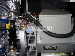 Diesel Generator Genset Lovol Pk30800 with Schneider Switch pictures & photos