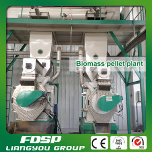 CE Approved Wood Pellet Power Plant for Biomass Fuel pictures & photos