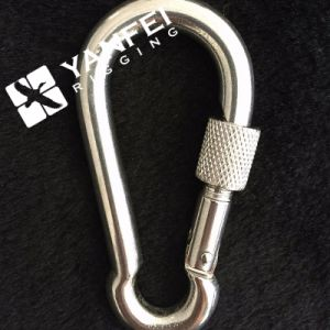 Stainless Steel AISI316/304 Spring Snap Hook with Eyelet pictures & photos