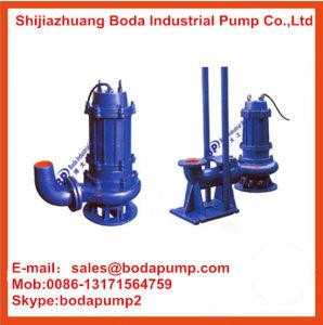 Submersible Ash Pump pictures & photos