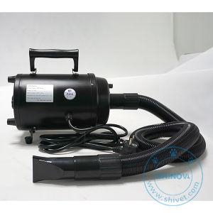 Professional Pet Dryer (DY-902) pictures & photos