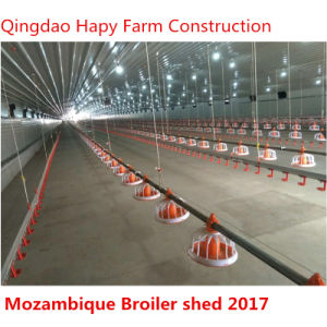 Steel Structure Shed with Poultry Equipments pictures & photos