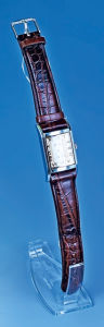 Can Be Placed Vertically on The Plastic Watch Stand pictures & photos