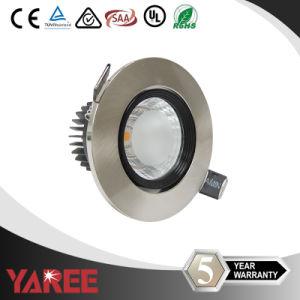 Aluminum Bronze COB LED Down Light