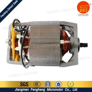 Jiangmen Genesis AC DC Universal Motor pictures & photos