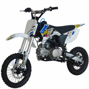 CE Approved 125cc Dirt Bike (DMD125-06)