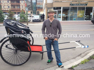 Human Power 2wheeled Cart pictures & photos