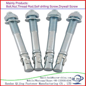 M10 Wedge Anchor Bolt Galvanized Carbon Steel Expansion Wedge Anchor Bolt pictures & photos