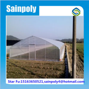 China Best Supplier Tunnel Greenhouse for Flower pictures & photos