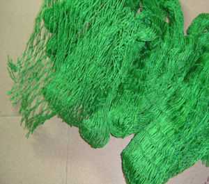Africa Grass Green Nylon Multifilament Nets pictures & photos