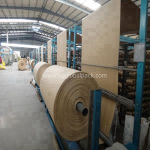 Chinese Factory PP Woven Tubular Fabric for FIBC pictures & photos