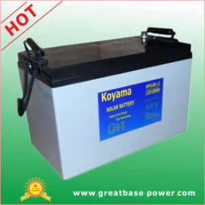 High Quality PV System Accumulator Deep Cycle Gel Battery100ah 12V pictures & photos