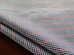 Yarn-Dyed Cotton Fabric/Gingham Fabric/Shirt Fabric (098)