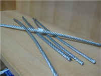 Galvanized Steel Wire Rope 8mm pictures & photos