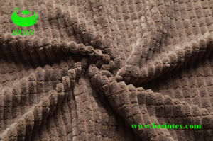 Corduroy Fabric (BS4107) pictures & photos
