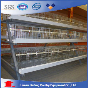 Hot Sale a Type Chicken Cage for Poultry Farm in Nigeria pictures & photos