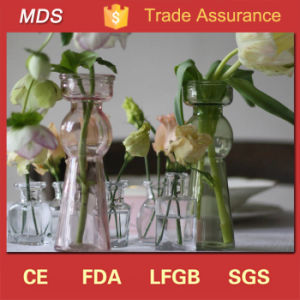 Wedding Wholesale Pastel Colored Glass Bottle Vase for Flowers pictures & photos