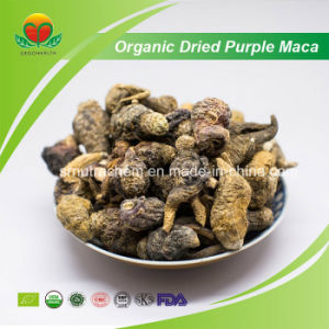 High Quality Organic Dried Purple Maca pictures & photos