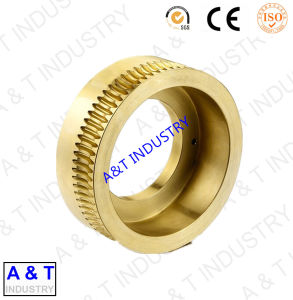 ISO9001 Certificated Factory OEM High Precision Worm Gear pictures & photos