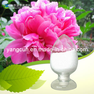 White Peony Extract Paeoniflorin 98% pictures & photos