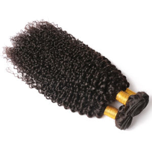 100% Human Hair Curly Weave, Afro Kinky Curly Virgin Hair pictures & photos