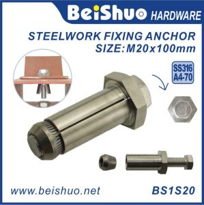 Construction Stainless Steel Expansion Anchor Bolt pictures & photos