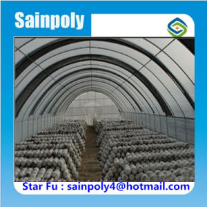 China Sainpoly Brand Tunnel Greenhouse for Mushroom pictures & photos