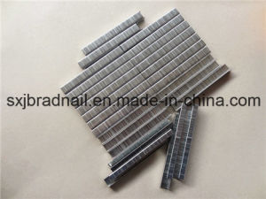 High Quality 416j Pneumatic Nails Sofa Staple pictures & photos