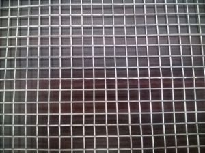 Stainless Steel Welded Wire Mesh with 1/4-Inch Square Opening