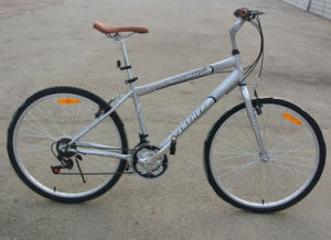 Brazil Hot Sale 18 Speed City Bike Urban Bicycle (FP-MTB-ST051) pictures & photos