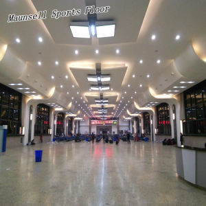 Professional PVC/Homogeneous Flooring for Airport/Subway/Office pictures & photos