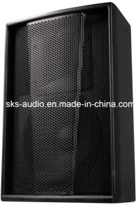Single 10 Inch Full Frequency Professional Speaker