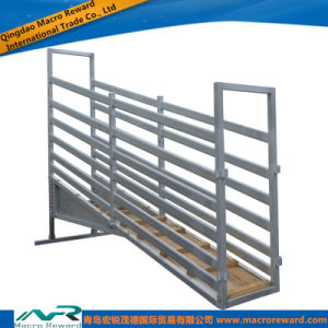 AS/NZS 4m Steel Cattle Loading Ramp Adjustable pictures & photos