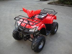 Cheap 110cc ATV pictures & photos