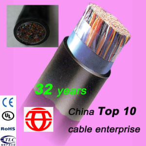 25 Pairs Outdoor Jelly Filled Shielded Telephone Cable pictures & photos